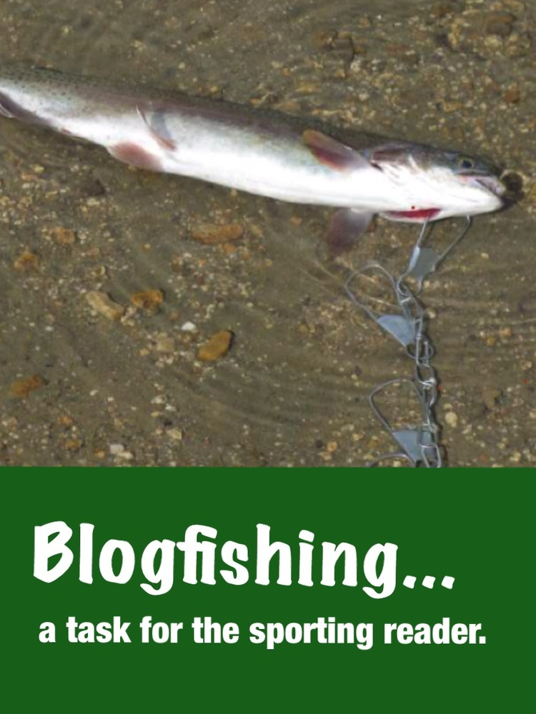 Blogfishing
