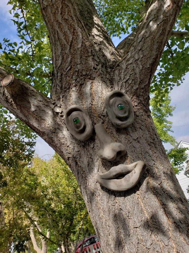 20180929_100124-That-Sacto-Tree-by-Steph-Abbott